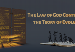The Ark and The Theory of Evolution:  Last Confrontation