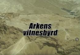 Arkens vitnesbyrd